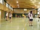 2011_Bezirks-Volleyballturnier_1
