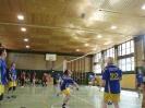 2011_Bezirks-Volleyballturnier_8