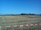 2011_Landespfluegen_42