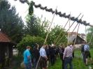 2011_Maibaumaufstellen_16