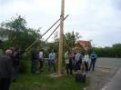 2011_Maibaumaufstellen_34