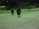2012_Eishockeyspiel_113