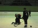 2012_Eishockeyspiel_123