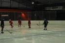 2012_Eishockeyspiel_12