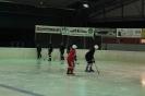 2012_Eishockeyspiel_14