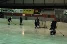 2012_Eishockeyspiel_16