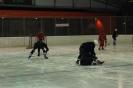 2012_Eishockeyspiel_19