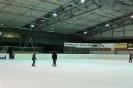 2012_Eishockeyspiel_1