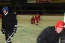 2012_Eishockeyspiel_20