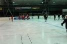2012_Eishockeyspiel_22