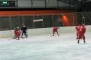 2012_Eishockeyspiel_25