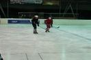 2012_Eishockeyspiel_26