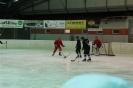2012_Eishockeyspiel_27