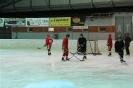 2012_Eishockeyspiel_28