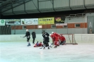 2012_Eishockeyspiel_29