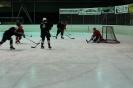 2012_Eishockeyspiel_37
