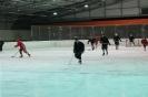 2012_Eishockeyspiel_39