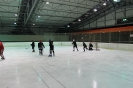2012_Eishockeyspiel_44