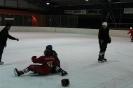 2012_Eishockeyspiel_4