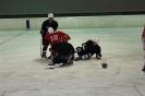 2012_Eishockeyspiel_53