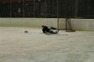 2012_Eishockeyspiel_54