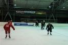 2012_Eishockeyspiel_5