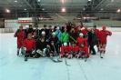 2012_Eishockeyspiel_68