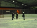 2012_Eishockeyspiel_72