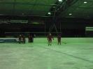 2012_Eishockeyspiel_74