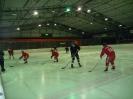 2012_Eishockeyspiel_76