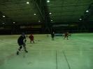2012_Eishockeyspiel_82
