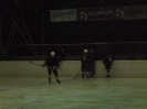 2012_Eishockeyspiel_84