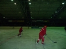 2012_Eishockeyspiel_94
