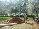 2012_Maibaum aufstellen_16