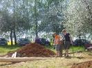 2012_Maibaum aufstellen_20